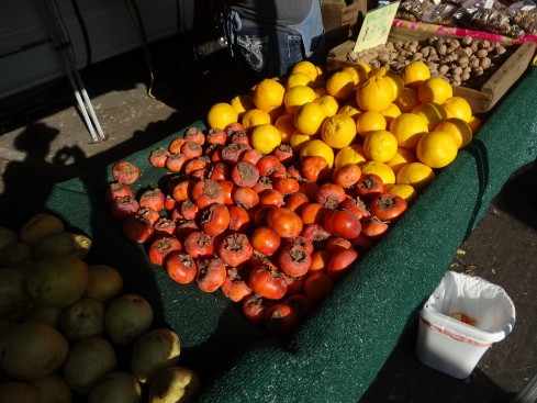 Persimmons and Grapefruit