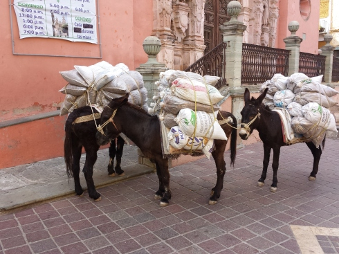 Grain Delivery